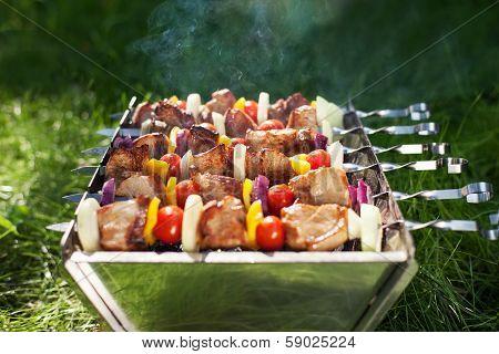 Making Grilled Meat On Sticks (shashlyk)