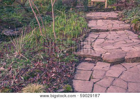 Stony pathway