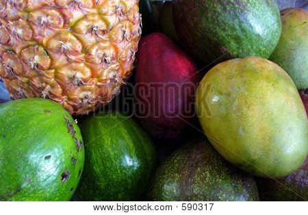 Fruits Of Jamaica