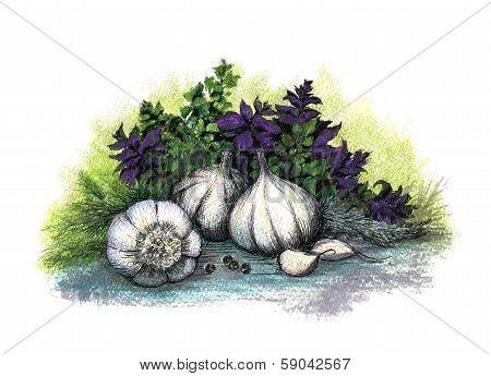 Garlic and herb