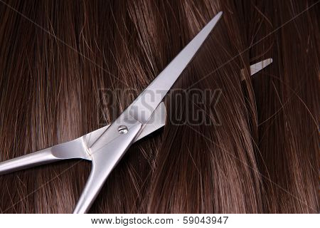 Long brown hair with scissors on close up