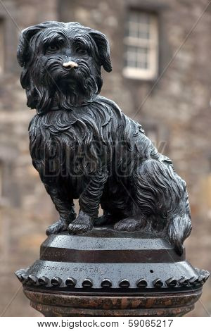 EDINBURGH - OCTOBER 07 2013 : Life-size statue of Greyfriars Bobby a Skye Terrier who spent 14 years guarding the grave of his owner, John Gray, until he died on 14 January 1872 on June 07