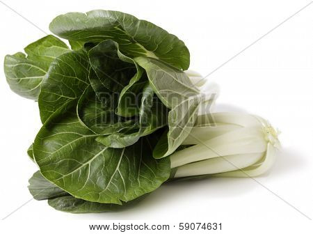 Two heads of fresh bok choi Asian cabbage over a white background.