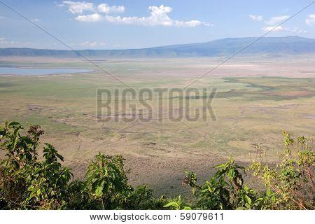 Ngorongoro crater in Tanzania, Africa panorama. Ngorongoro Conservation Area