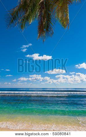 Scene Beach Sea