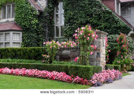 Elegant House with Flowers