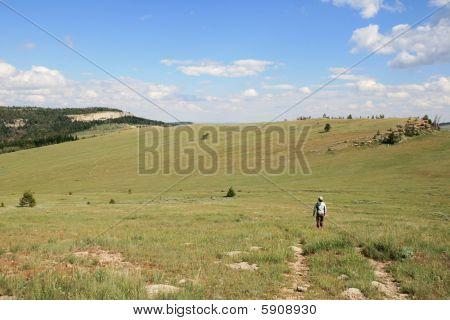 Woman Walking Across Meadow
