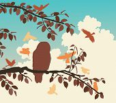 foto of songbird  - Editable vector illustration of songbirds mobbing an owl - JPG