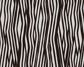 stock photo of bareback  - Illustration of zebra fur - JPG