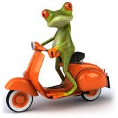 foto of amazonian frog  - Fun green frog - JPG