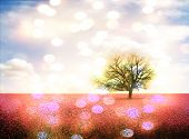 image of row trees  - a pretty landscape with a pink field and a tree - JPG