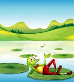 Illustration of a frog above the waterlily floating at the pond