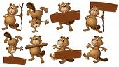 picture of beaver  - Illustration of a group of beavers with empty wooden boards on a white background - JPG