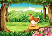 foto of egg-laying  - Illustration of a hen laying eggs at the forest - JPG
