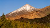 pic of magma  - volcano Teide and surrounding landscape at the Island of Tenerife - JPG