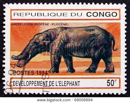 Postage Stamp Zaire 1994 Amebelodon, Prehistoric Animal