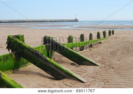 Wooden Sea Barrier At Spittal And Lighthouse