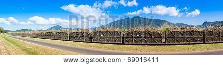Panorama of a sugar cane train