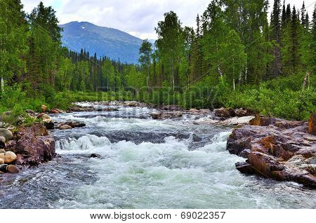 Raging Mountain River