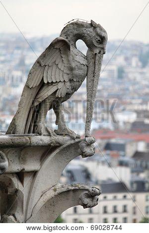 Stone Bird Gargoyle, Notre Dame Cathedral, Paris, France