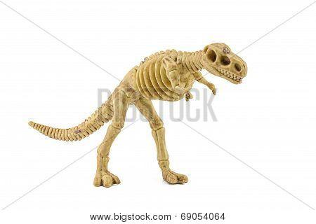 Tyrannosaurus Rex Fossil Skeleton Toy Isolated On White.