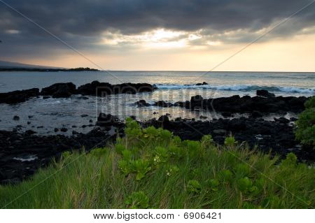 A-bay Hawaii