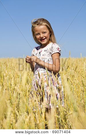 Little blonde girl in a wheat golden field