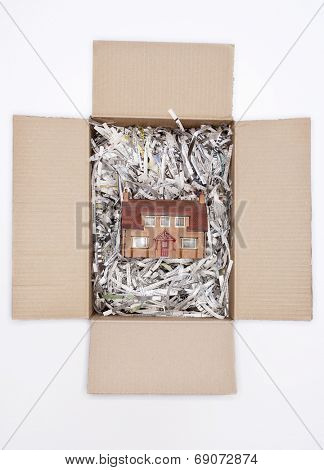 House in Cardboard Box
