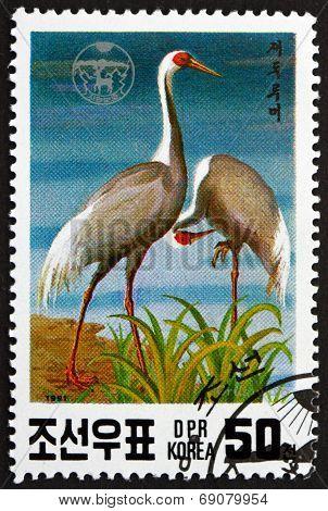 Postage Stamp North Korea 1991 Japanese White-necked Crane, Bird
