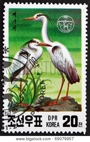 Postage Stamp North Korea 1991 Gray Heron, Wading Bird