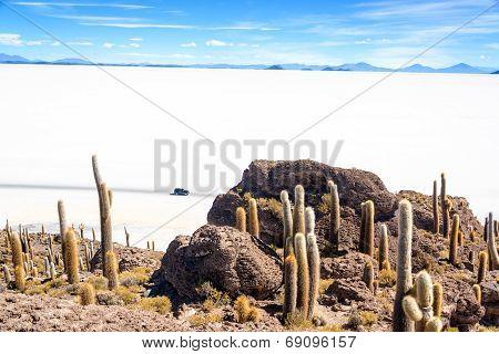 View From Incahuasi Island