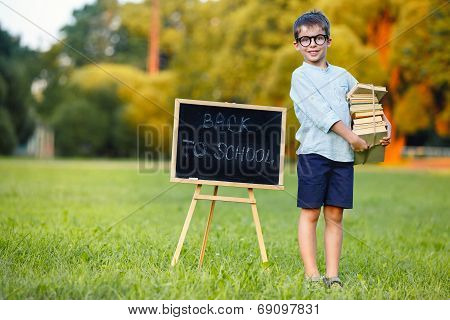 Cute schoolboy carrying a large stack of books