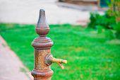 pic of spigot  - a rusty spigot in a green park - JPG