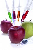 image of modification  - Genetic modification of fruit with a syringe full of chemicals - JPG