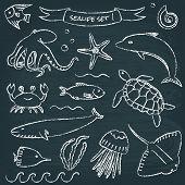 stock photo of devilfish  - Chalkboard collection of hand drawn sea animals - JPG