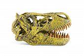 image of tyrannosaurus  - Tyrannosaurus fossil head toy isolated on white - JPG
