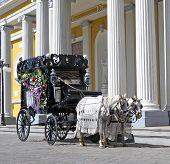 picture of hearse  - a old black hearse wagon - JPG