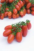 picture of plum tomato  - Cherry tomato  - JPG