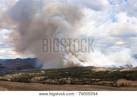 Hillside Ablaze In Yellowstone Park