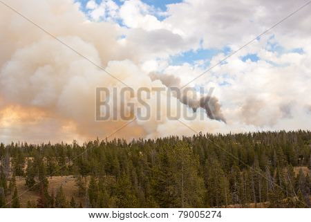 Bright Burning Fire Clouds In Yellowstone Park