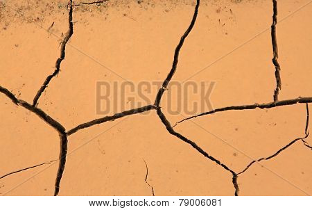 Drought, detail of ground dried and cracked mud