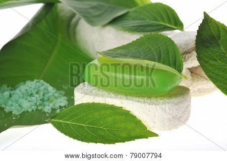 Green Soap And Sponge