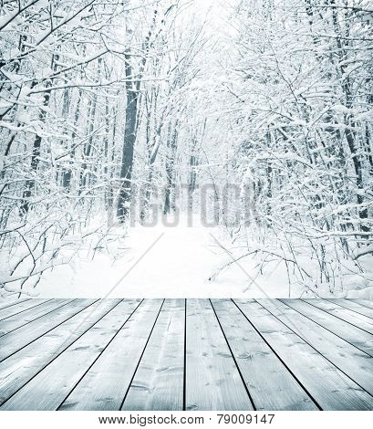 Panorama of winter forest with trees covered snow and wooden floor