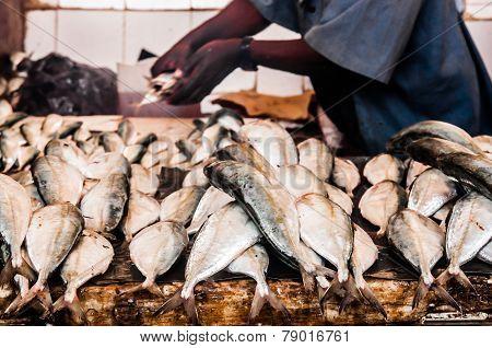 Stone Town Fish Market