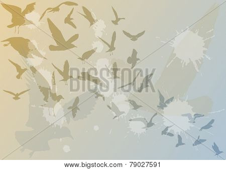 illustration with blue and brown gull silhouette background