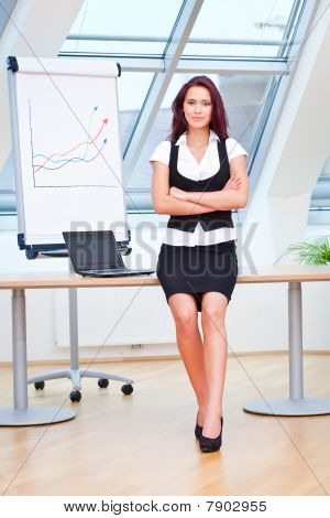 Pretty Young Businesslady