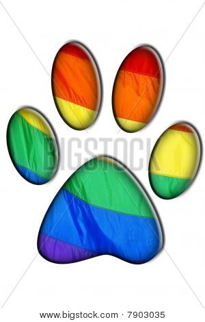 Gay Bear