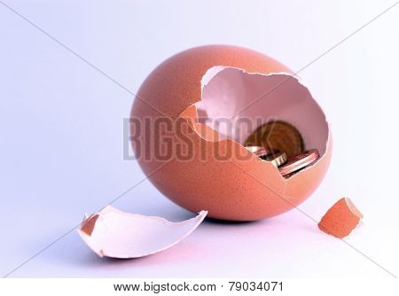 Euro Coins Sitting Inside Cracked Hatched Egg. Symbol For Economy, Business, Income, Banking, Financ
