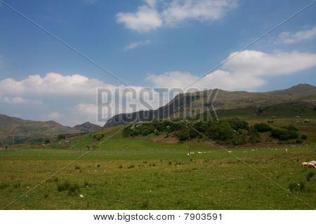 Cwm Pennant Views