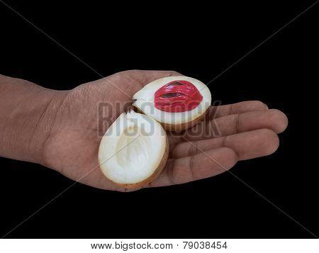 Opened Nutmeg Fruit